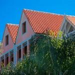 Coral building