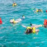 Snorkeling (6)