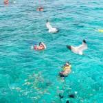 Snorkeling (8)